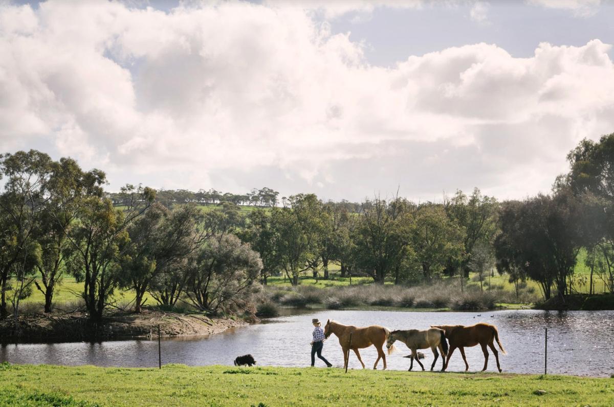 Buckland Estate Borrowed Blue Australia